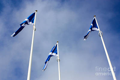 Scotland Poster by Nichola Denny