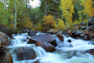 Poster featuring the photograph Scott Gomer Creek At Guanella Pass by Marie Leslie
