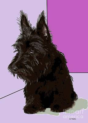 Scottish Terrier Poster by George Pedro