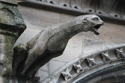 Poster featuring the photograph Screaming Griffon Notre Dame Paris by Christopher Kirby