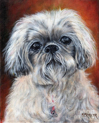 Scruffy Dog Poster by Shelley Marler