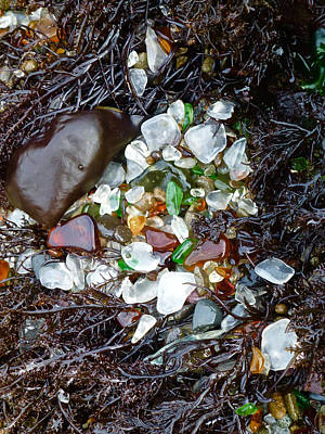 Sea Glass Nest Poster