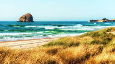 Sea-grass Dunes Poster