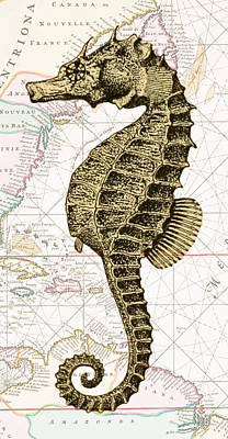 Sea Horse Nautical Chart Poster by Erin Cadigan