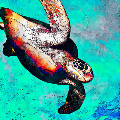 Sea Is My Home - Hawksbill Poster