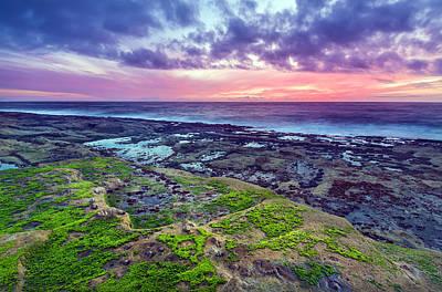 Sea Moss Sunset Poster by Robert Bynum