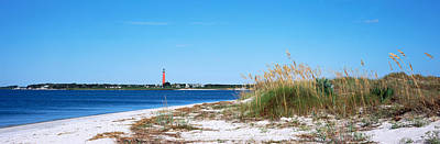 Sea Oat Grass On Beach With Ponce De Poster by Panoramic Images
