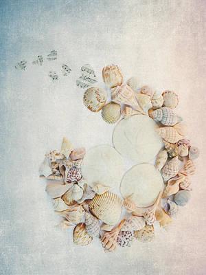 Sea Shells 7 Poster