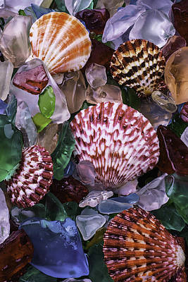Sea Shells Among Sea Glass Poster