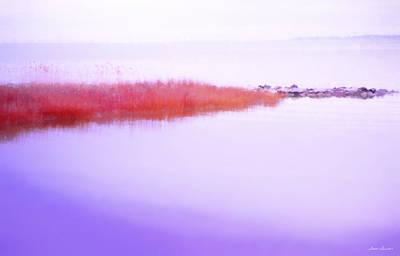 Seagrass Sandbar Poster