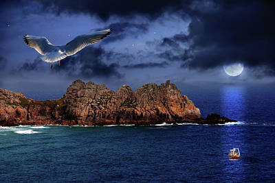 Seagull Flight Poster by Jaroslaw Grudzinski