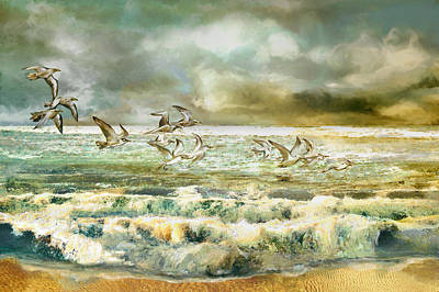 Seagulls At Sea Poster by Anne Weirich
