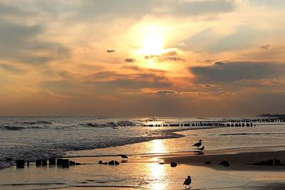 Seagulls On Beach Poster