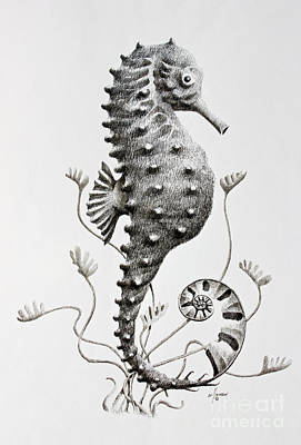 Seahorse  Poster by James Williamson