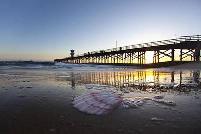 Seal Beach Shell Poster by Sean Davey