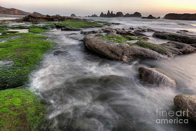 Seal Rock State Park At Sunset Poster