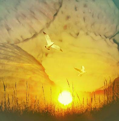 Seashell Sunrise Poster
