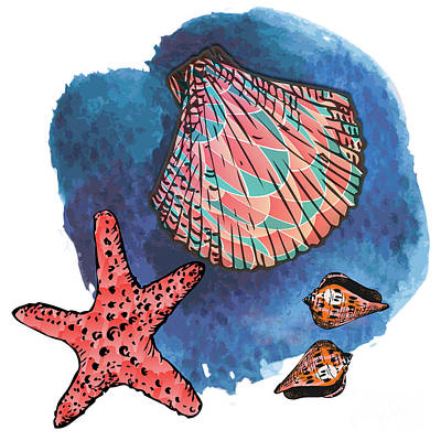 Seashells And Starfish Poster by Gaspar Avila
