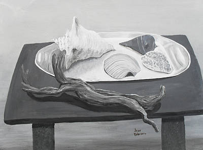 Seashells On Table Poster