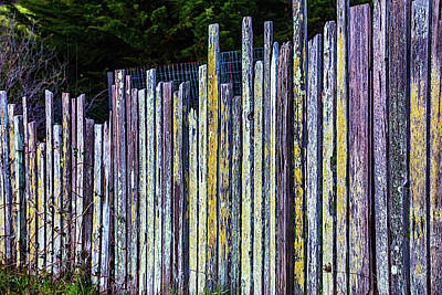 Seashore Fence Poster by Garry Gay
