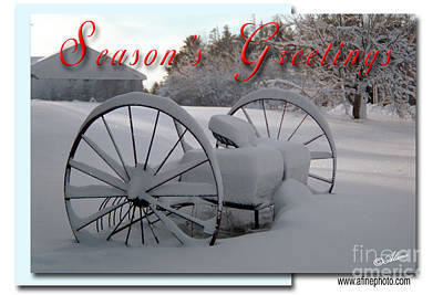 Poster featuring the photograph Seasons Greetings by Alana Ranney