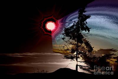 Sechelt Tree Stardust Poster by Elaine Hunter