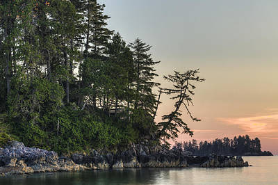 Secluded Tonquin Poster by Mark Kiver