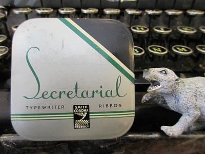 Secretarial Typewriter Ribbon And Weasel Poster by David Lovins