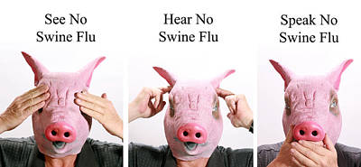 See No Swine Flu  Hear No Swine Flu   Speak No Swine Flu Poster by Michael Ledray