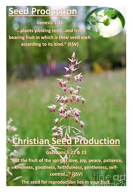 Seed Production Poster