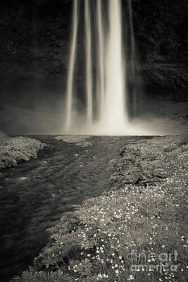 Poster featuring the photograph Seljalandsfoss Waterfall Iceland by Edward Fielding
