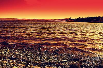 Sepia Lake Poster by Mickey Harkins