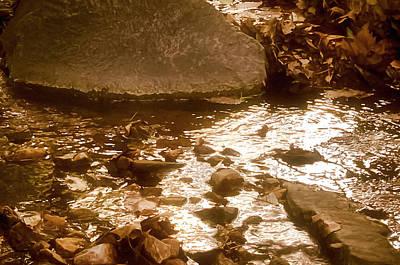 Sepia Sunlight Poster by Michael Putnam
