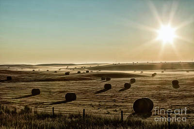 Poster featuring the photograph September Hay by Brad Allen Fine Art