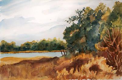 Serene Marsh  Poster by Barbara Jung