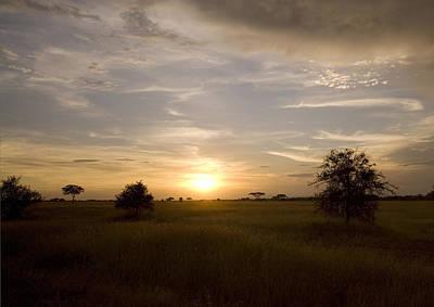 Serengeti Sunset Poster by Patrick Kain