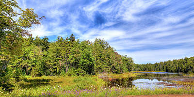 Poster featuring the photograph Serenity On Bald Mountain Pond by David Patterson
