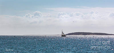 Poster featuring the photograph Setting Sail by Michelle Wiarda