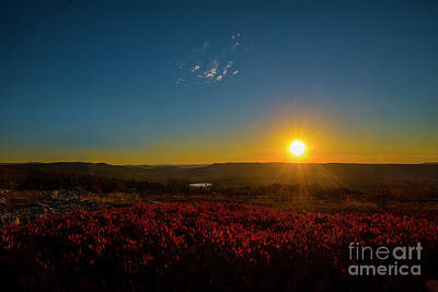 Setting Sun At Dolly Sods Poster