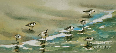 Seven Sandpipers At The Seashore  Poster
