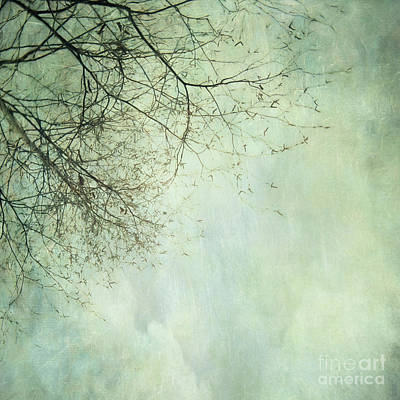 Summer Meadow Poem 4 Poster by Priska Wettstein