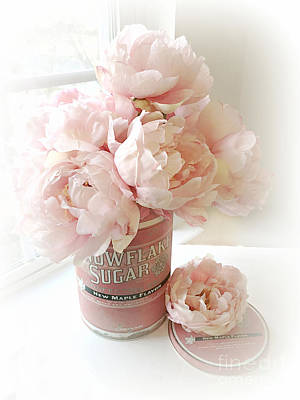 Shabby Chic Pink Pastel Peach Peonies Vintage Romantic Floral Decor Poster