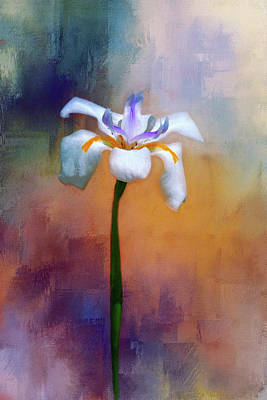 Shades Of Iris Poster by Carolyn Marshall