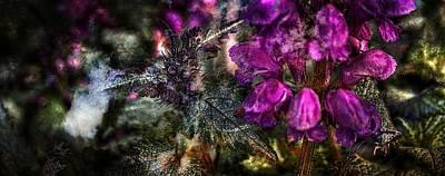 Shades Of Purple  Poster by Thom Zehrfeld