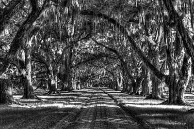 Shadows Of Time Tomotley Plantation Live Oak Art Poster by Reid Callaway