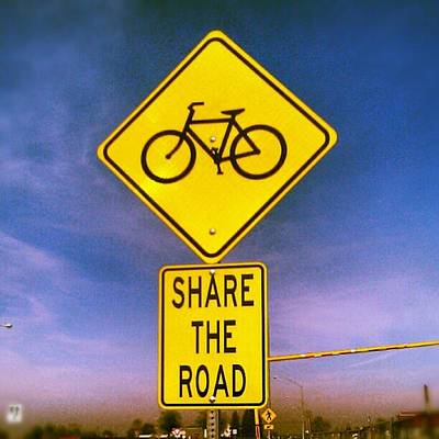 Share The Road  Poster by Stacy  Sharelle