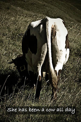 Poster featuring the photograph She Has Been A Cow All Day by Frank Tschakert