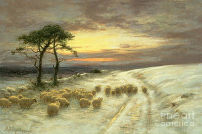 Sheep In The Snow Poster by Joseph Farquharson