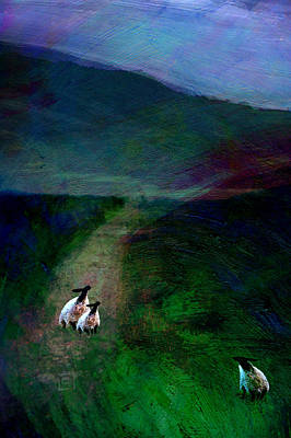 Sheep On The Moor Poster by Jean Moore