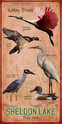 Sheldon Lake State Park Poster by Jim Sanders